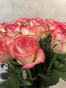Роза розовая №890
